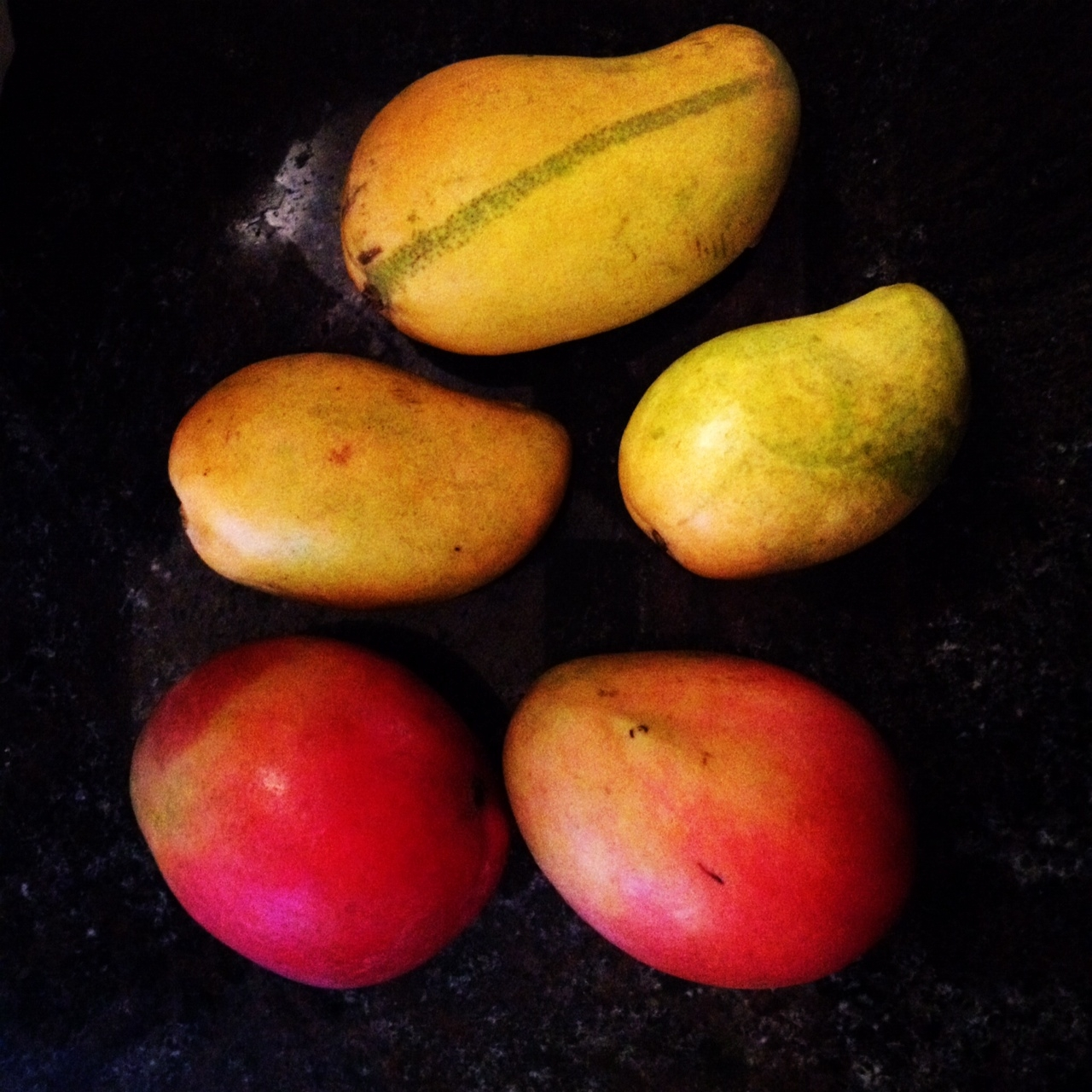 """my favorite fruit mango There are many types of fruits having different varieties and varying taste, but my  favorite one is """"mango"""", the king of fruits due to its yummy."""