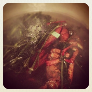 Lobster in the pot