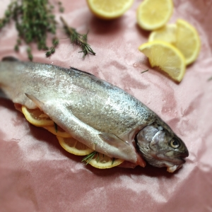 Ovenbaked trout