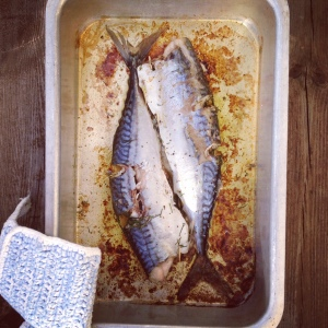 Dill filled mackerel