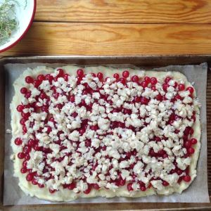 Red currant squares